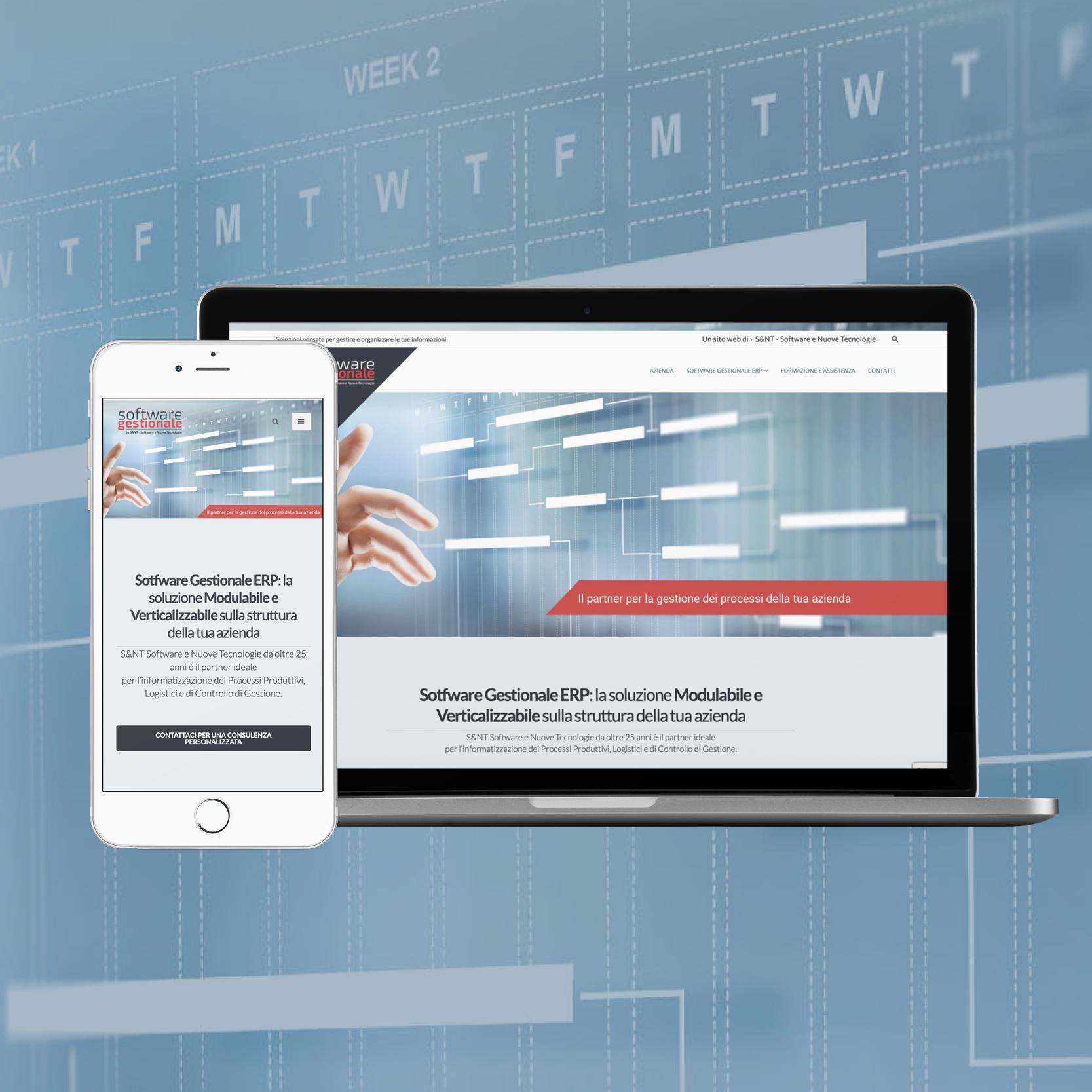 cover mockup sito portfolio_softwaregestionalefirenze